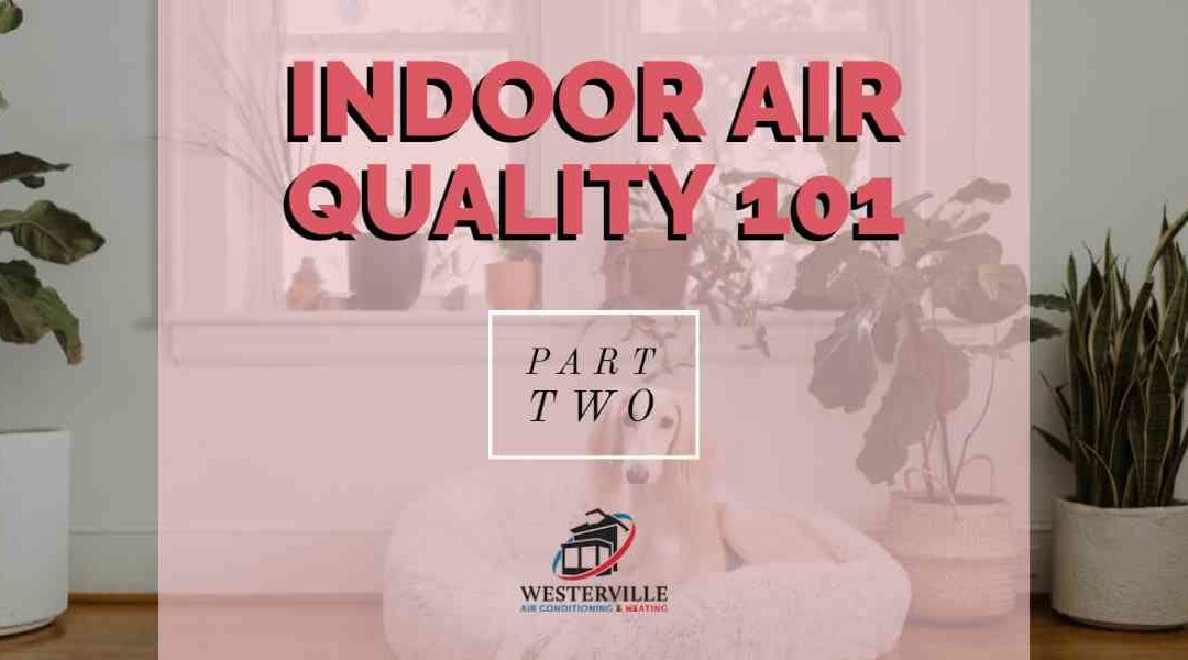 Indoor Air Quality 101 – Part 2: Different Sources of Indoor Air Pollution and Their Health Effects
