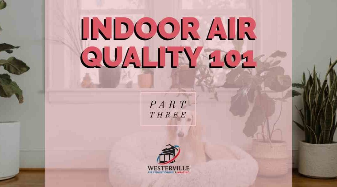 Indoor Air Quality 101 – Part 3: Products & Services that Enhance the Air Quality in Your Westerville Home