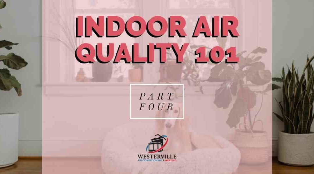 Indoor Air Quality 101 – Part 4: DIY Tips to Improve Your Home's Air Quality